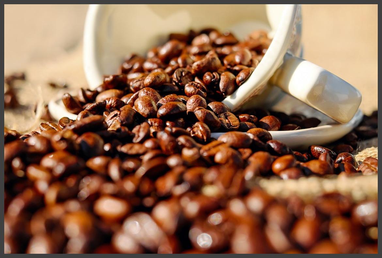 Kaffee & Koffein